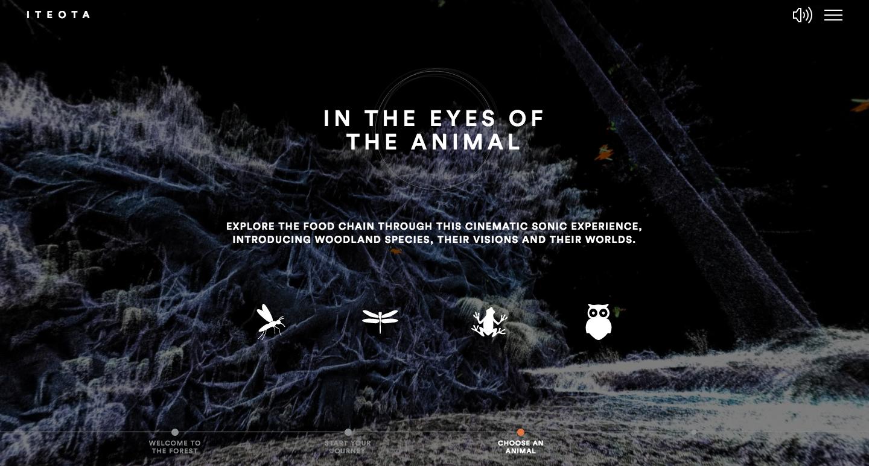 ITEOTA - scegli il tuo animale. Immagine dal sito ufficiale del porgetto.